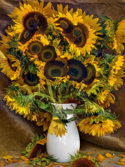 Abelardo Morell, 'Flowers For Lisa #28', 2016