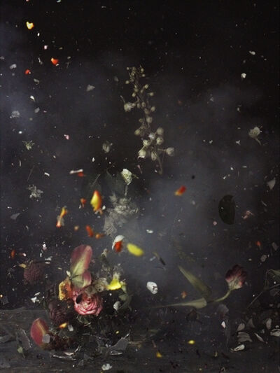 Ori Gersht, 'Time After Time, Untitled 24', 2006