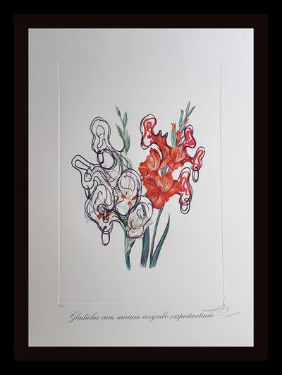 Salvador Dalí, 'Florals Pirate's Gladioli', 1972