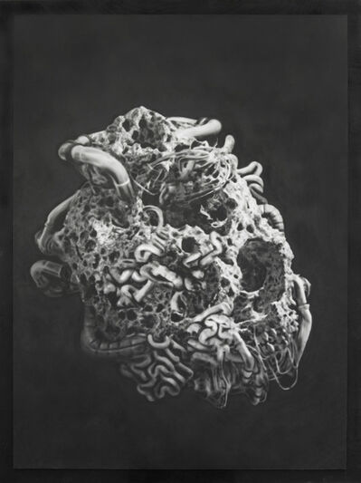 Thomas Feuerstein, 'COSMOSE', 2019