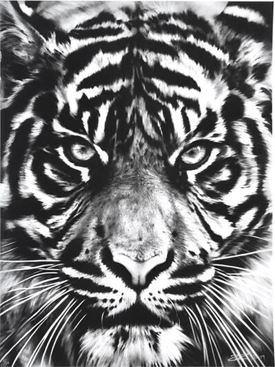 Robert Longo, 'Tiger', 2014