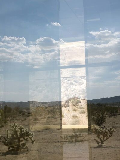 Mona Kuhn, 'Ácido Dorado (AD 6301)', 2014