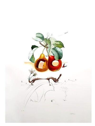 "Salvador Dalí, 'Original Lithograph ""Flordali - Fruits With Holes"" by Salvador Dali', 1969"