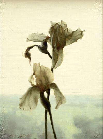Daniel Sprick, 'Backlit Iris', 2014