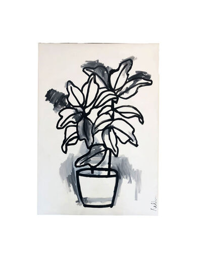 Matthew Heller, 'Untitled (House Plant)', 2019