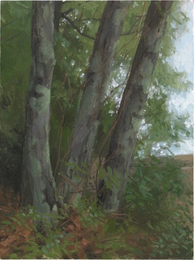 Jacob Collins, 'Three Maples', 2010