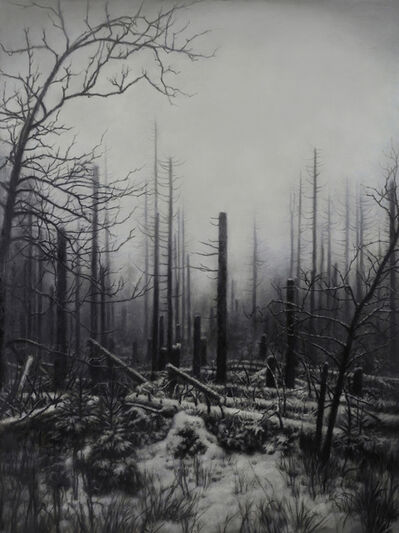 Jaco van Schalkwyk, 'Nemora VIII', 2018