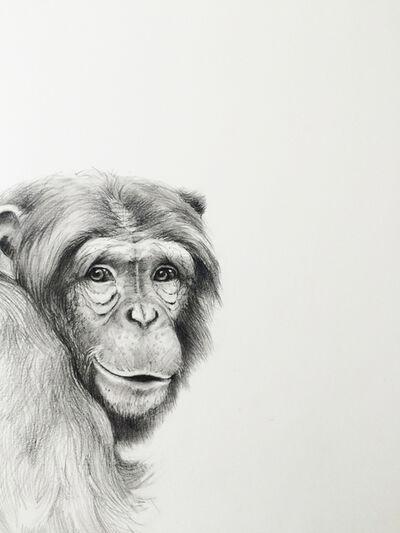 Adonna Khare, 'Smiling Chimp '