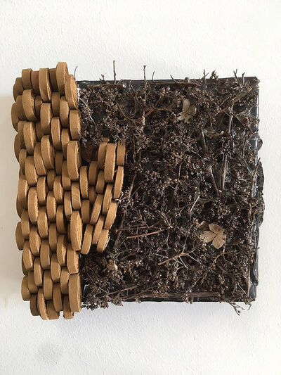 Joyce Barker-Schwartz, 'Wall sculpture made of suede & natural organic material: 'Flora/Fauna'', 2019