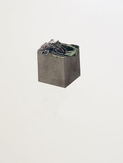 Maria Garcia Ibañez, 'No.5 Inner Landscape Face', 2012