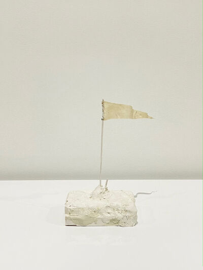 Eric Oglander, 'Replaced Flag', 2021