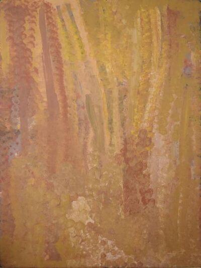 Emily Kame Kngwarreye, 'Untitled - Anooralya Yam Dreaming', 1994