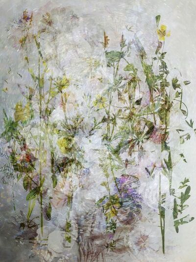 Kim Boske, 'Moving Flowers #1', 2020
