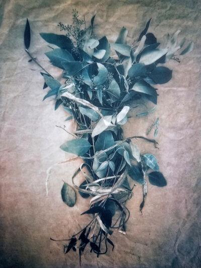 Diana Bloomfield, 'Bound Eucalyptus ', 2018
