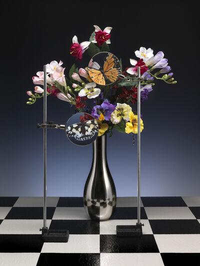 Tom Van Eynde, 'Butterflies', 2007