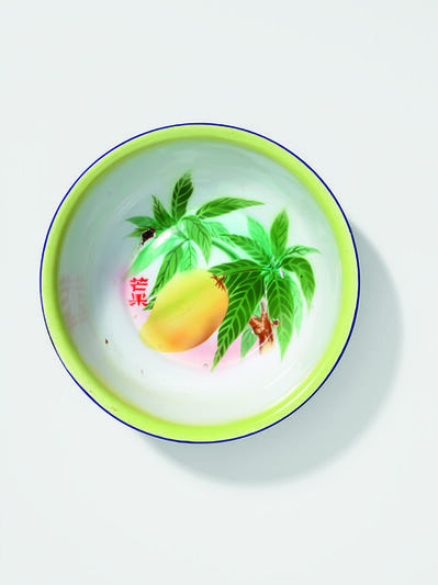 'Enamel wash basin, mango hanging from tree'