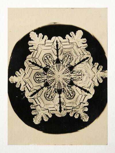 Wilson A. Bentley, 'Snowflake', 1888