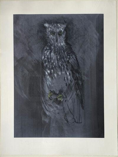 Jim Dine, 'Great Horned Owl', 2000