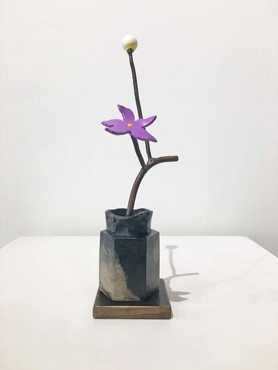 David Kimball Anderson, 'Winter Seed', 2018