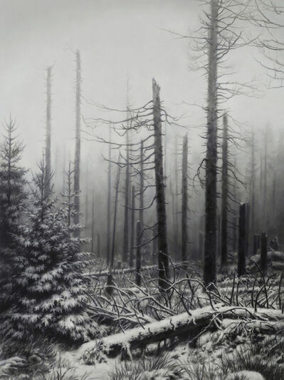 Jaco van Schalkwyk, 'Nemora VI', 2018
