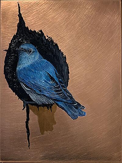 Darren Johnson, 'Mountain Bluebird Nest', 2018