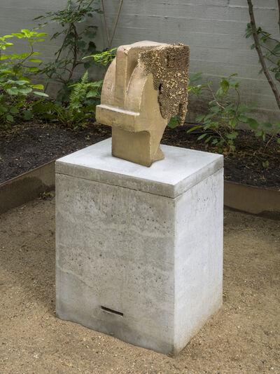 Michael Sailstorfer, 'Kopf und Körper Marzahn 03', 2017