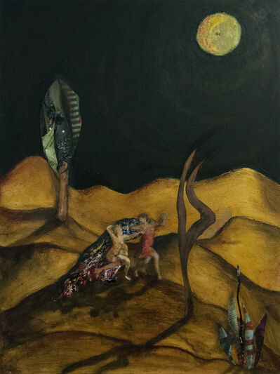 Denise Adler, 'Moon Shadows', 2014-2015