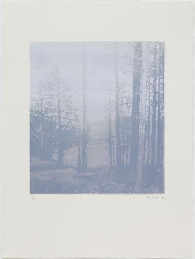Paul Winstanley, 'Landscape 42', 2010