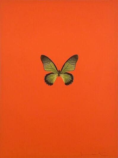 Damien Hirst, 'Six Butterflies I', 2011