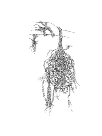 Donna Conlon, 'Ropes and Mangroves #5', 2018