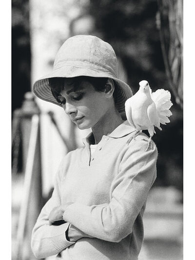 Terry O'Neill, 'Audrey Hrepburn with Dove', 1966