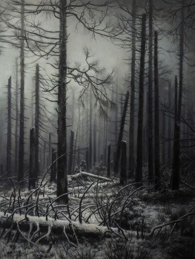 Jaco van Schalkwyk, 'Nemora IX', 2018