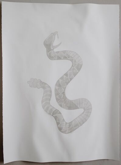 Maurício Ianês, 'La Serpiente (Mexico)', 2015