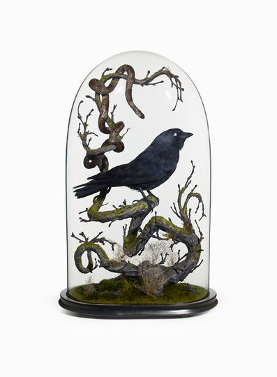 Nancy Fouts, 'The crow and the Snake', 2013
