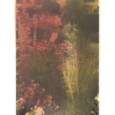 Ellen Phelan, 'Autumn Border II', 2008
