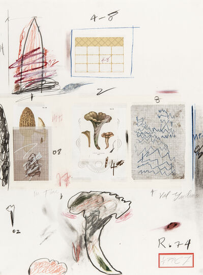 Cy Twombly, 'Natural History Part I N° VI', 1974