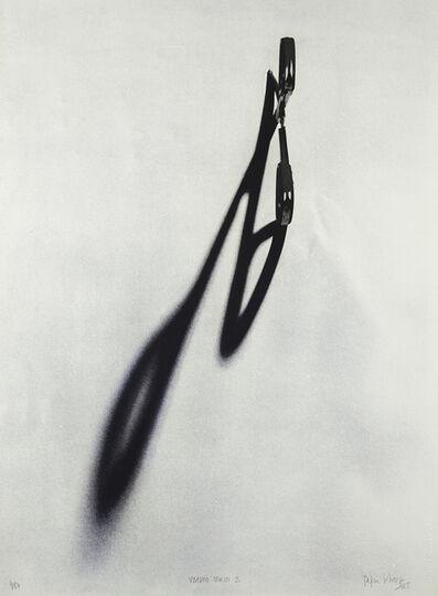 Regina Silveira, 'Voodoo Series 2', 2015