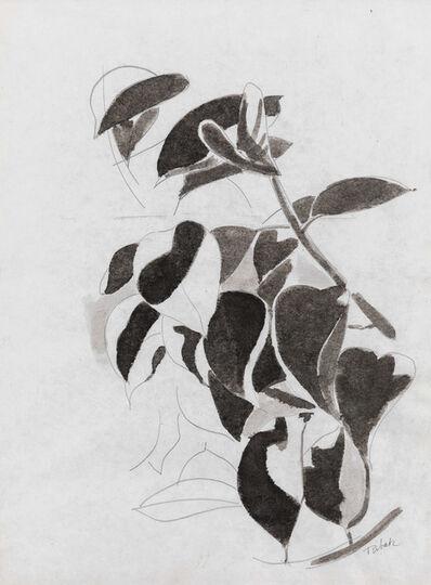 Louis Ribak, 'Untitled (Black & White Leaves)', 1970
