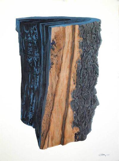 Ray Cicin, 'Charred Log'