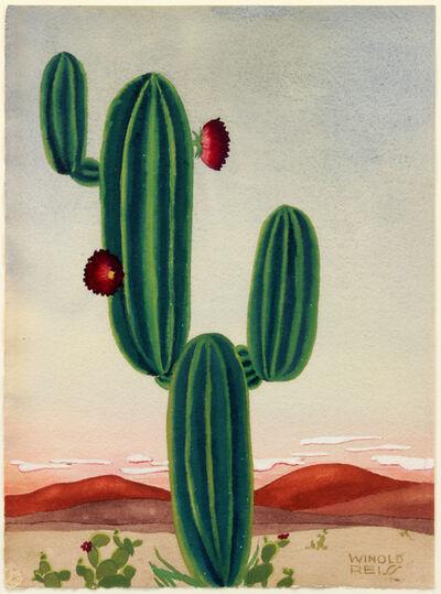 Winold Reiss, 'Cactus'