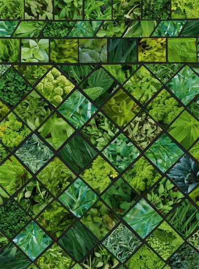 Margaret Lanzetta, 'Green Green', 2015