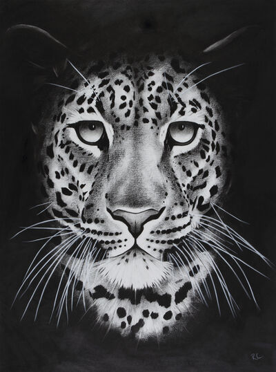 Rose Corcoran, '5. Night Leopard', 2018