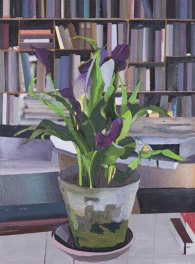 Erik A. Frandsen, 'The Exact Distance Between Flower and Bookshelf V', 2017