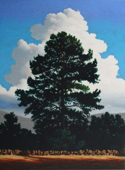 Kendall Stallings, 'Cloud and Pine', 2015