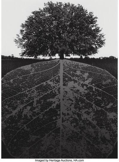 Jerry Uelsmann, 'Untitled', 1964