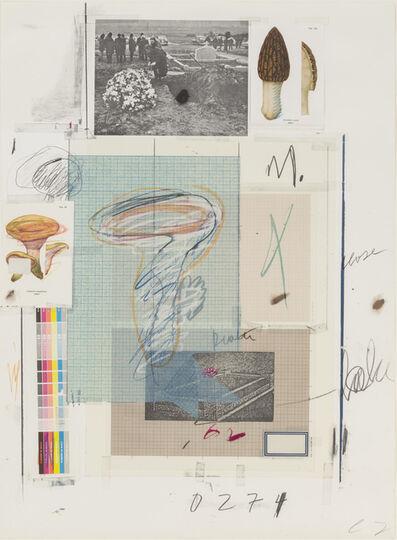 Cy Twombly, 'Natural History Part I Mushrooms, No. VII', 1974