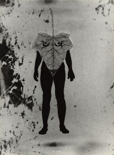 Birgit Jürgenssen, 'Ohne Titel (Naturgeschichte) / Untitled (Natural History) ', 1975