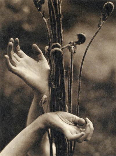 Edward Steichen, 'Dana Steichen's Hands', 1923