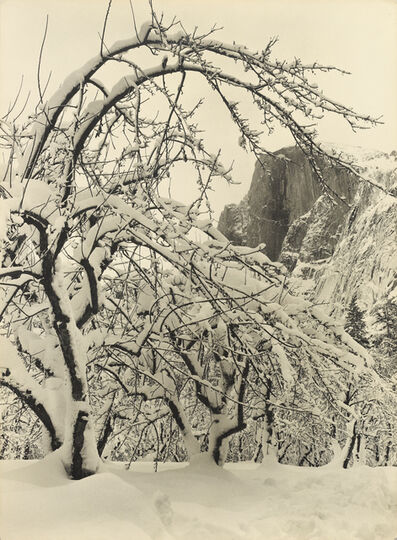 Ansel Adams, 'Half Dome, Apple Orchard, Winter, Yosemite', ca. 1935