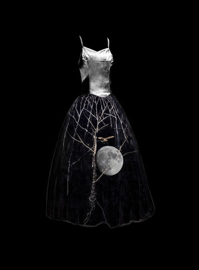 Todd Murphy, 'Untitled (Night Owl Murmations Dress)', 2015